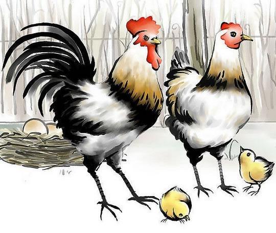 12生肖2014年运程鸡_1981年属鸡的人2015年运程 - 大家找算命网