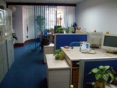 公司与办公室风水植物