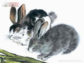 1963年属兔的人2016年运程