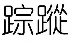 踪字的五行属什么,踪字有几划,踪字的含义