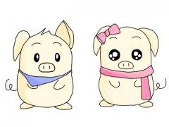属猪的人终身运程_生肖猪的命运如何?
