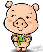 初九日生属猪人命运好吗?