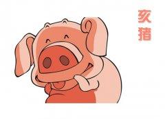 初六日生属猪人命运好吗?