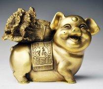 猪人生于亥时命运好吗?