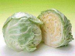梦见圆白菜周公解梦,梦见圆白菜是什么意思?