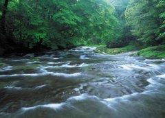 梦见溪水周公解梦,梦见溪水是什么意思?