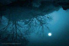 梦见月入水中周公解梦,梦见月入水中是什么意思?